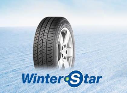 Winterstar15151456761550068546.jpg